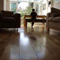 oak-photo-for-web